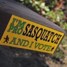 Vote Sasquatch ✔️#stickers #vote #sasquatch #marketing #branding